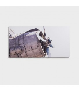CAN-016 - Abandoned Plane Canvas Art -