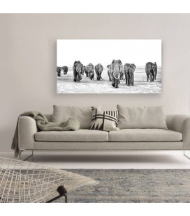 Elephant Walk Canvas Art | Wall Art for Sale -