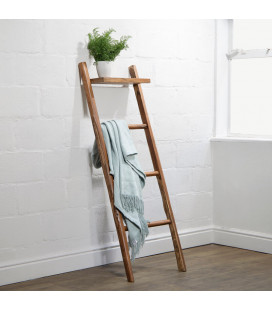 Asha Ladder with Shelf