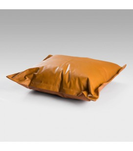 Scatter Cushion - PL-05