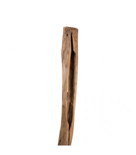 Teakroot on Stand - 5| Decor | Freestanding Art | Art | Cielo -