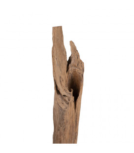 Teakroot on Stand - 6| Decor | Freestanding Art | Art | Cielo -