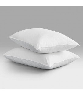 2 x Goose Feather Down Pillow