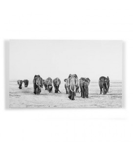 Elephant Walk Wall Art