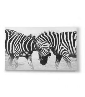 Zebra Fight Canvas Art