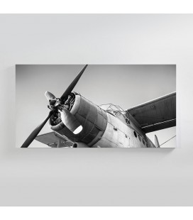 Crop Duster Canvas Art