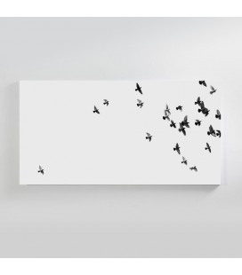 Flock of Pigeons Canvas