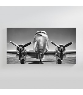Vintage Cargo Plane Canvas Art -